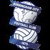Logo Birmingham City