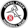 Logo Sokol Pisek
