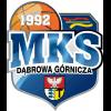 Logo Dabrowa Gornicza