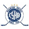 Logo Briancon