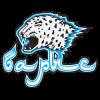 Logo Barys Astana