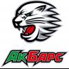 Logo Bars Kazan