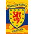 Logo Szkocja U19