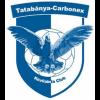Logo Tatabanya