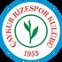 Logo Rizespor