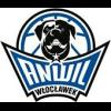 Logo Anwil Wloclawek