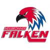 Logo Heilbronner Falken