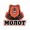 Logo Molot Perm